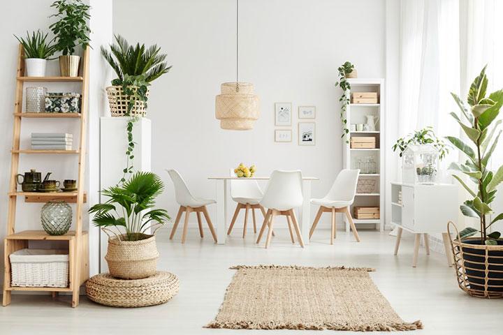Dónde colocar plantas artificiales en cada habitación de casa