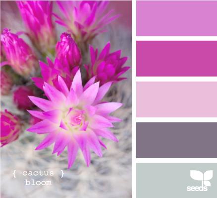 Colores que combinan violeta decorar hogar - Que colores combinan con el lila ...