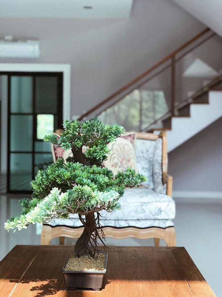 Decorar una casa con bonsais artificiales