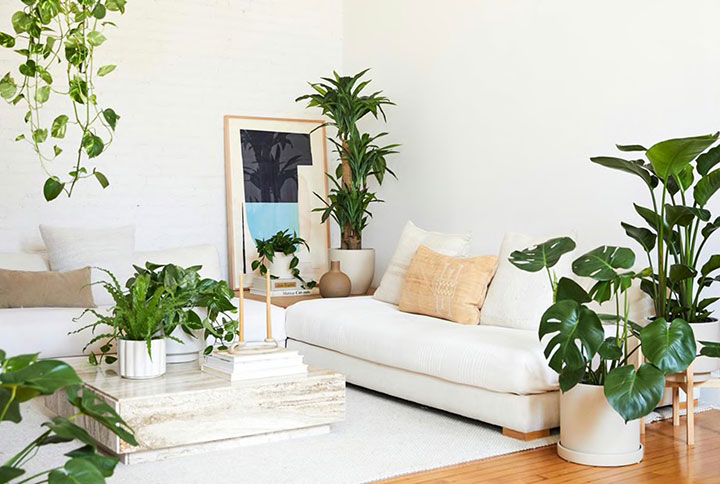 Cómo decorar la casa con plantas artificiales