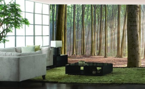 Fotomurales de naturaleza decorar con fotomurales - Fotomurales pared ...