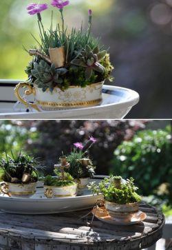 fotos-de-mini-jardines-10