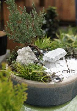 fotos-de-mini-jardines-14
