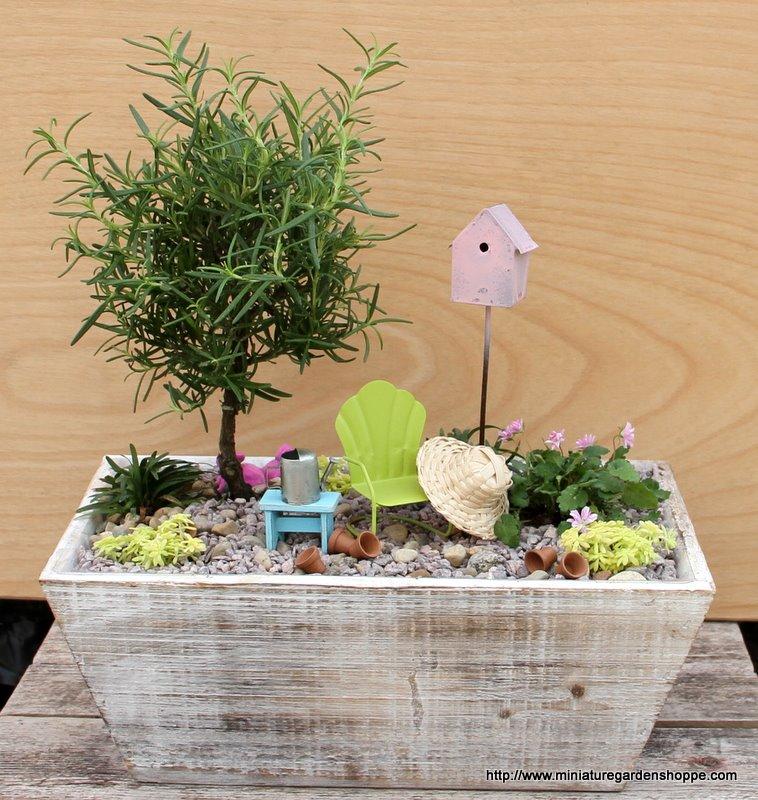 C mo hacer un jard n en miniatura decorar hogar for Jardines en miniatura