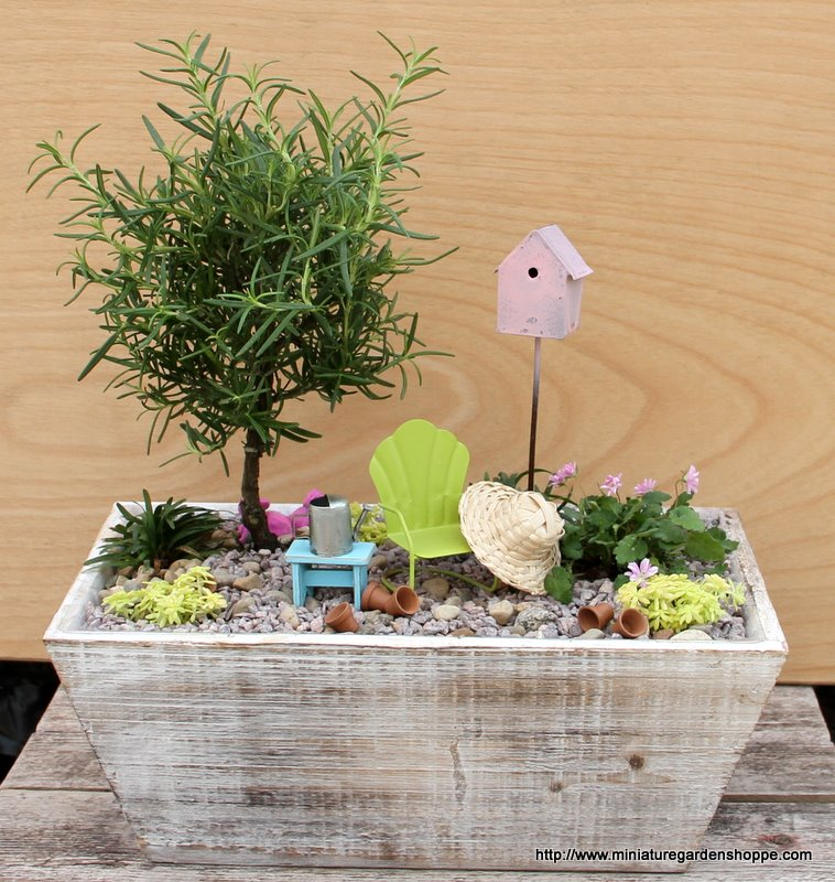hacer-jardin-en-miniatura-01