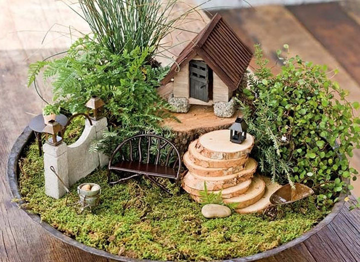 Ideas de Jardines en Miniatura