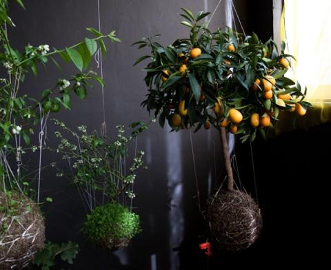 jardines-verticales-01