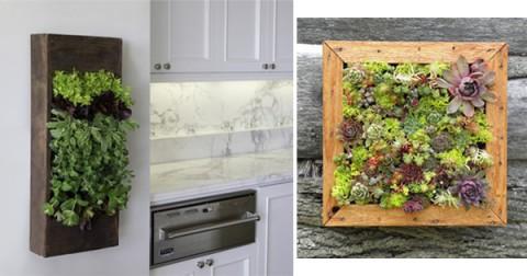 5 ideas de jardines verticales decorar hogar - Cuadro jardin vertical ...