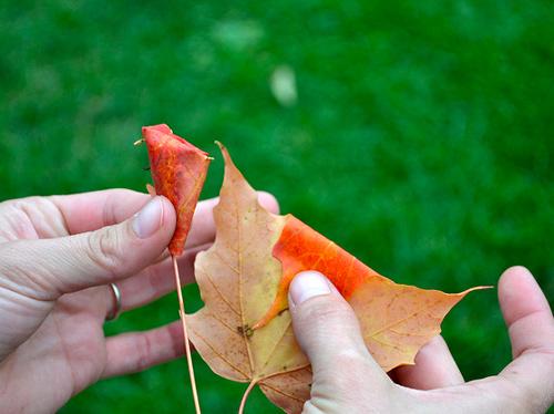 hacer-una-rosa-con-hojas-02