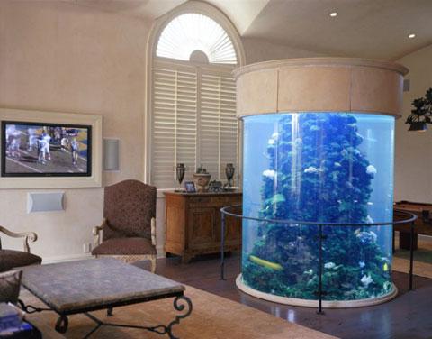 11 ideas para poner un acuario decorar hogar - Peceras para casa ...