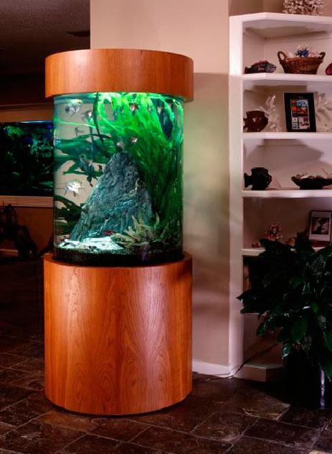 ideas-acuario-casa-08