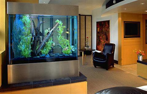 ideas-acuario-casa-09