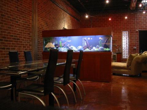 ideas-acuario-casa-10