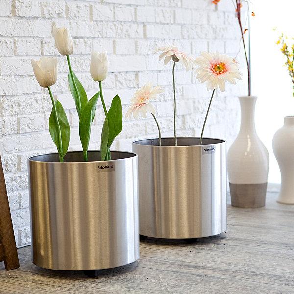 Decoración minimalista con plantas