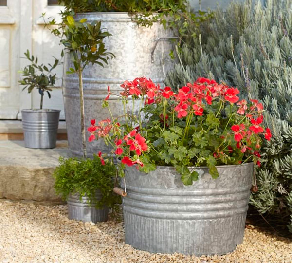 Cubos galvanizados para macetas con flores