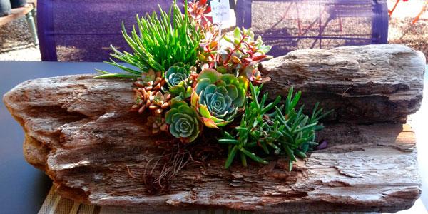 Ideas de macetas y jardineras originales recicladas - Tipos de jardineras ...