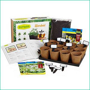 Kit para plantar en casa Hierbas de Infusiones
