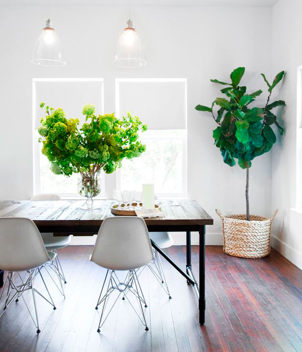 Decoración como los profesionales con plantas en cestas