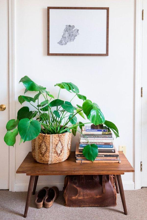 Plantas de hoja verde en cestas marrones como truco de decoración