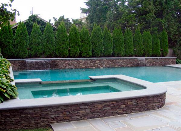 Árboles de cipres tapar vecinos piscina
