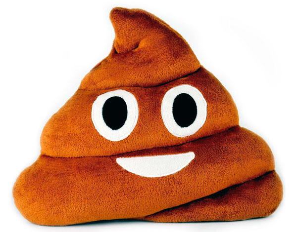 Cojines emoji emoticonos whatsapp caca marrón