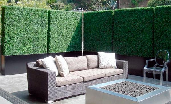 paredes de boj privacidad jardin