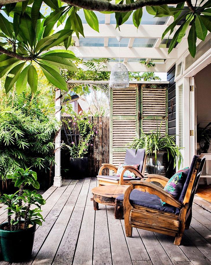 Plantas para tapar a los vecinos y ganar privacidad