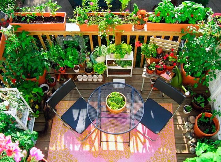 Jardines en balcones pequeños