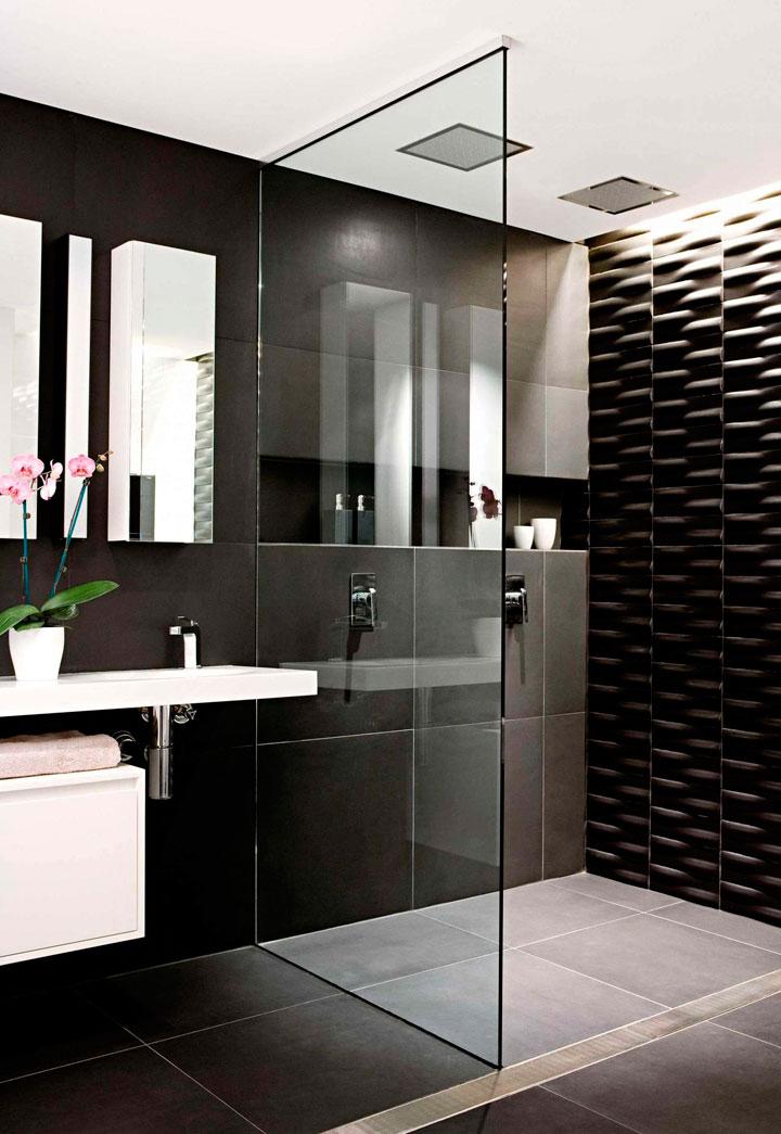 Baños blanco y negro con ducha